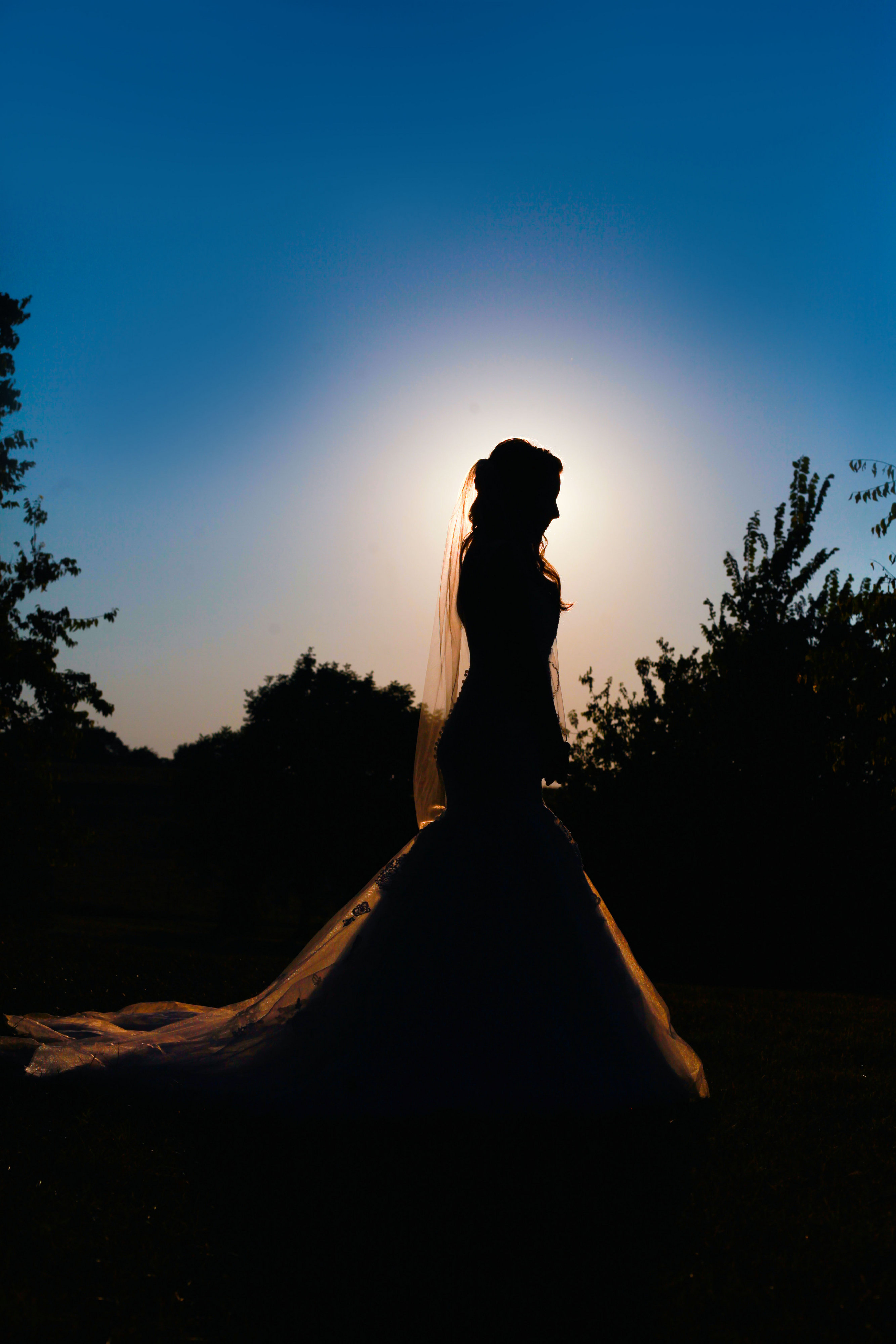 View More: http://brandonburtonphotography.pass.us/danielle--stirling
